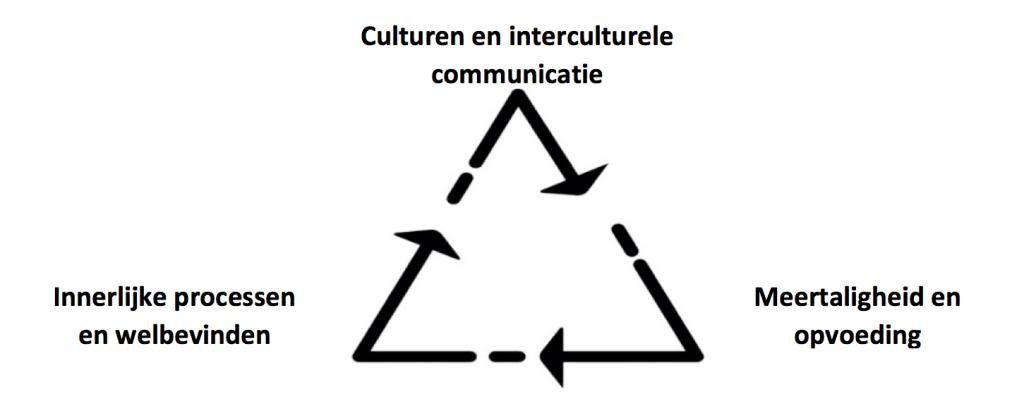 cultuur driehoek